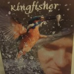 Read :Book Review- Flight of the Kingfisher